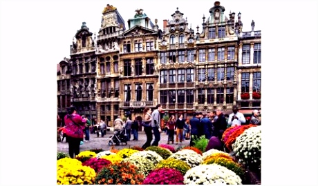 11 dingen je nog niet wist over Belgi Le Pain Quoti n NL