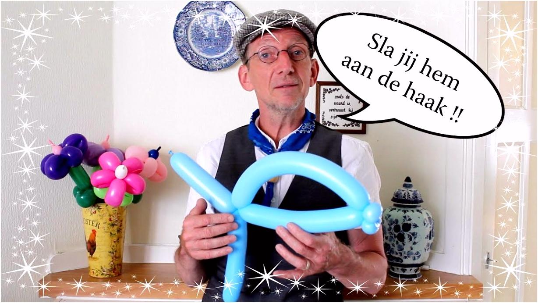 Ballonvis Balloon fish Ballonvouwen met de Haagse Ballonnenboer
