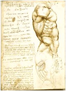 3693 beste afbeeldingen van Leonardo da Vinci in 2018 Drawings