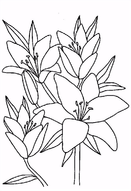 ▷ Kleurplaten Bloemen Bewegende Afbeeldingen Gifs & Animaties