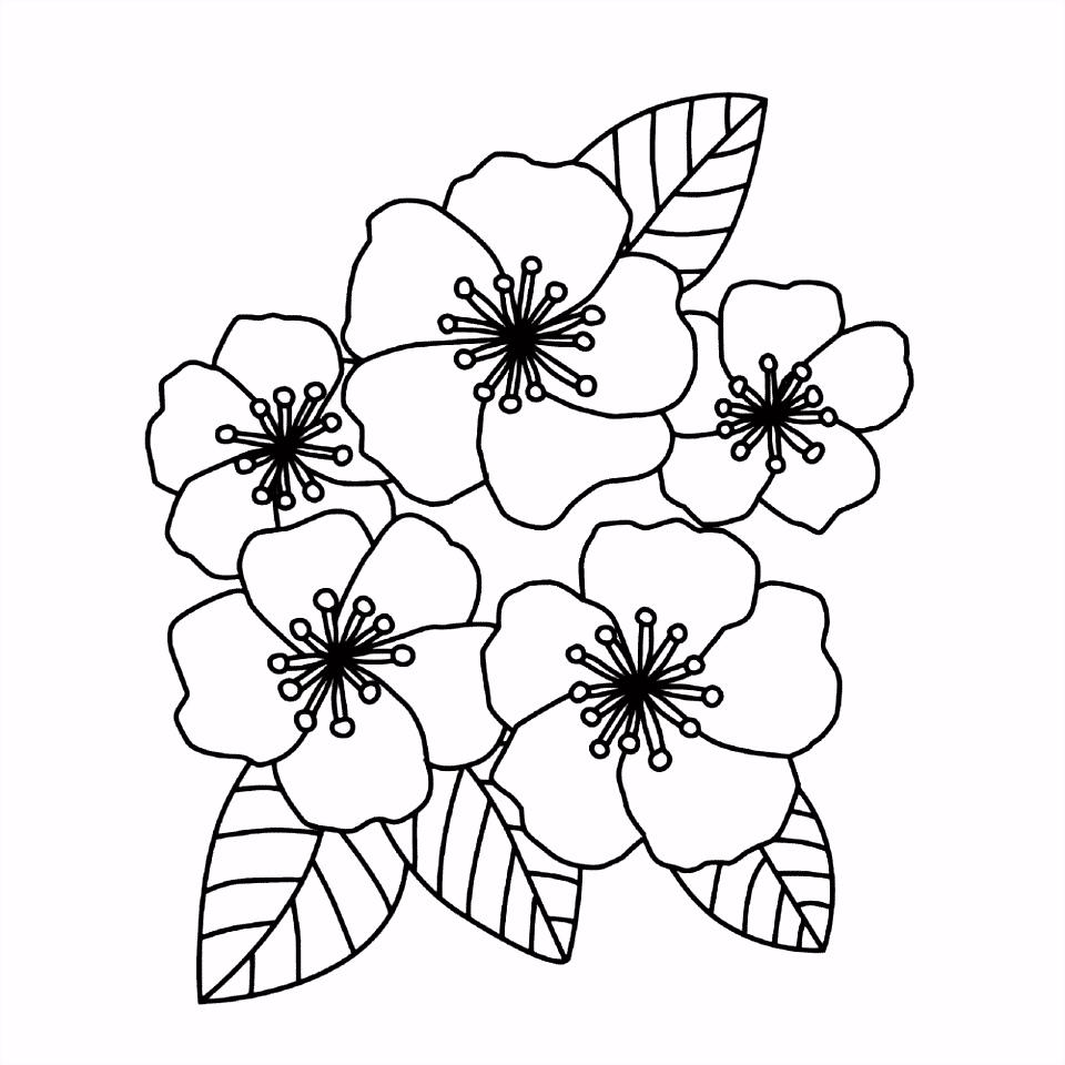 Bloem kleurplaten – Bloemen
