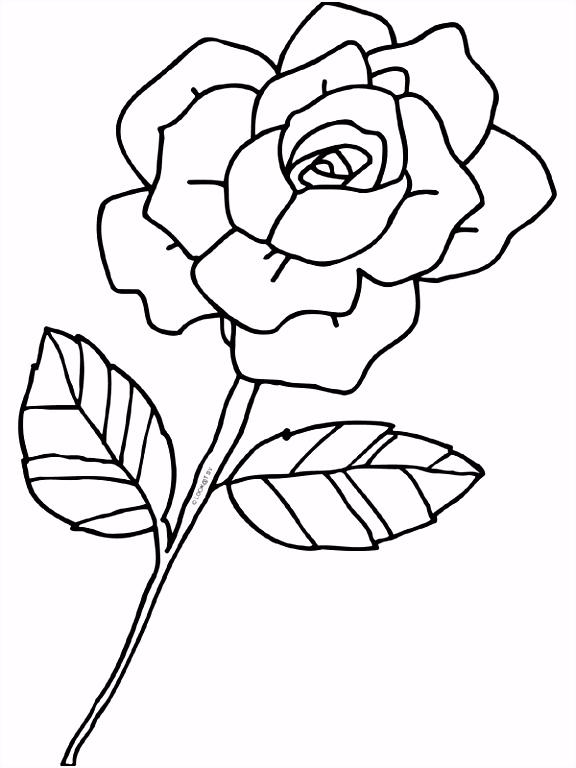 Kleurplaat Roos Bloem liefde Kleurplaten