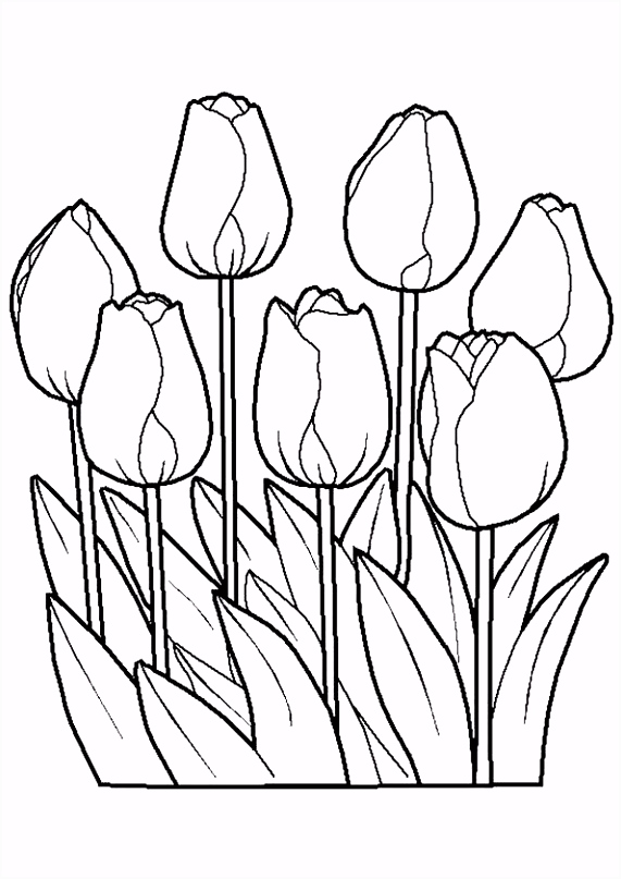 Lente Bloem Kleurplaten En Lente Bloem Kleurplaat – quadeofo