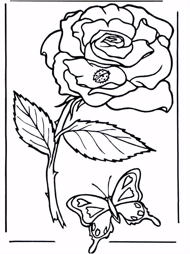 Roos Kleurplaten bloemen