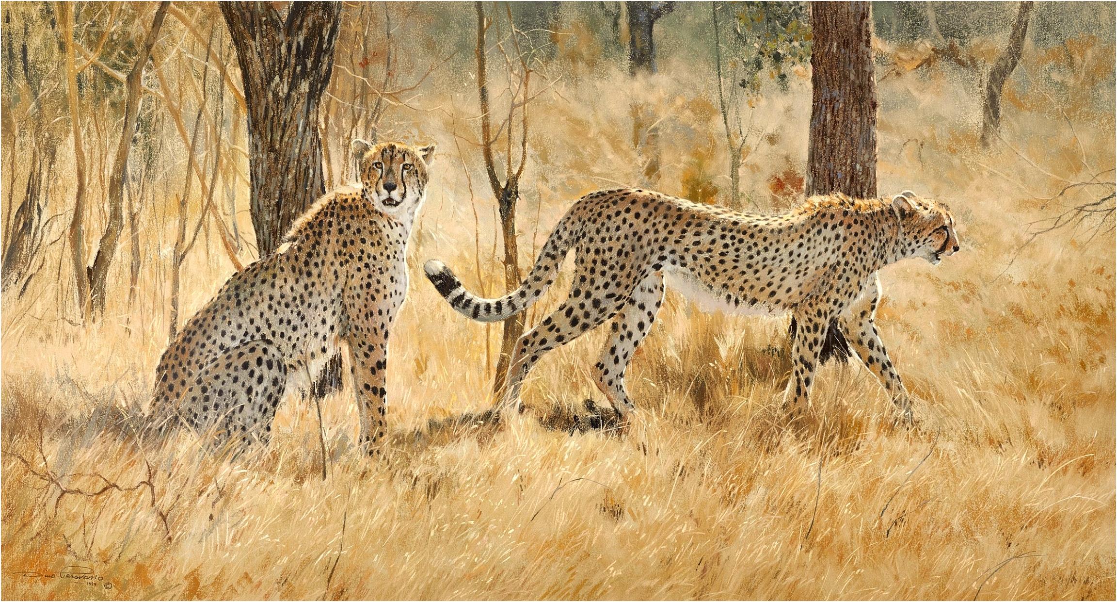 Dino Paravano Cheetah Pair