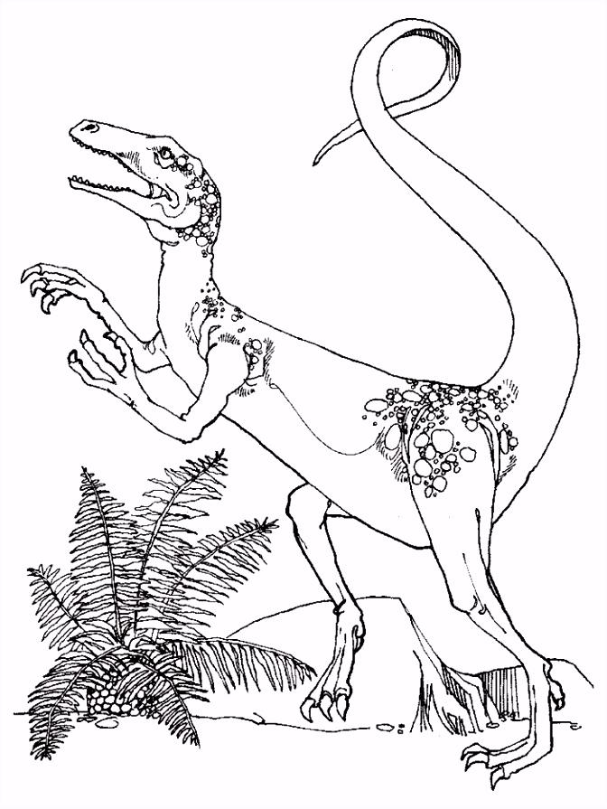 Gratis Dinosaurus Kleurplaten voor Kinderen