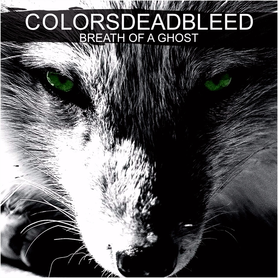 Interview Colors Dead Bleed