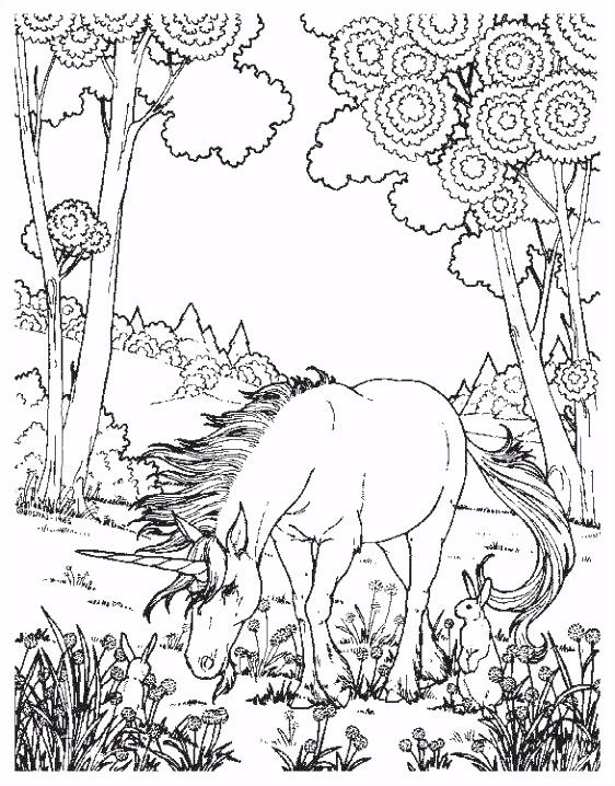 Eenhoorn Kleurplaat Kleurplaten Eenhoorn Regenboog – wakashiragafo