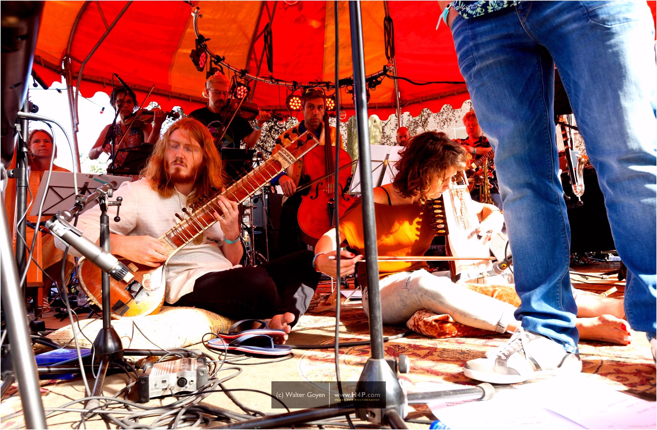 50 jaar Sgt Pepper Beatles eerbetoon bij Lepeltje Lepeltje