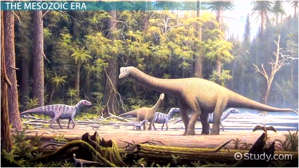 The Mesozoic Era Facts Events & Timeline Video & Lesson