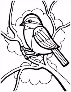Free Bird Coloring Pages Unique Leprechaun Coloring Pages I Pinimg