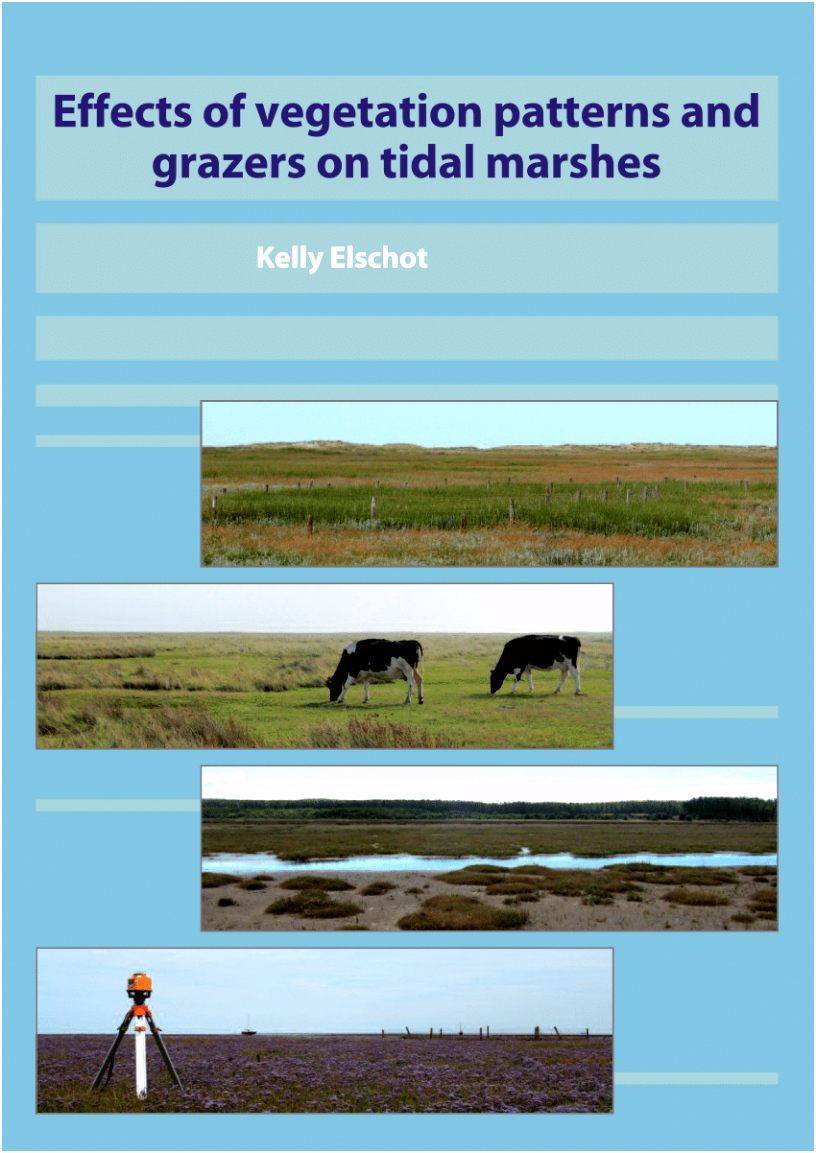 PDF Effects of ve ation patterns and grazers on tidal marshes