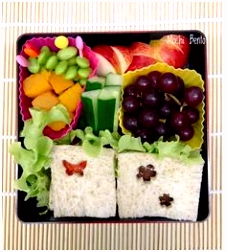 13 best Mochi Bento images on Pinterest