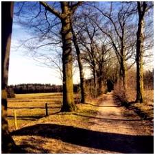 44 best Natuurgebieden in Brabant De plete gids images on