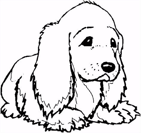kleurplaten ren Puppys Kleurplaten ren honden puppies