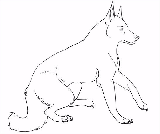 Kleurplaten van honden kleurplaat overzicht
