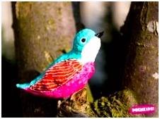In Mei Legt Elke Vogel Een Ei Lenteknutsel 58 Beste Afbeeldingen Van Natuur Om Bricolage En Crafts for Kids H4id73tvr3 Ivbfvubjs5
