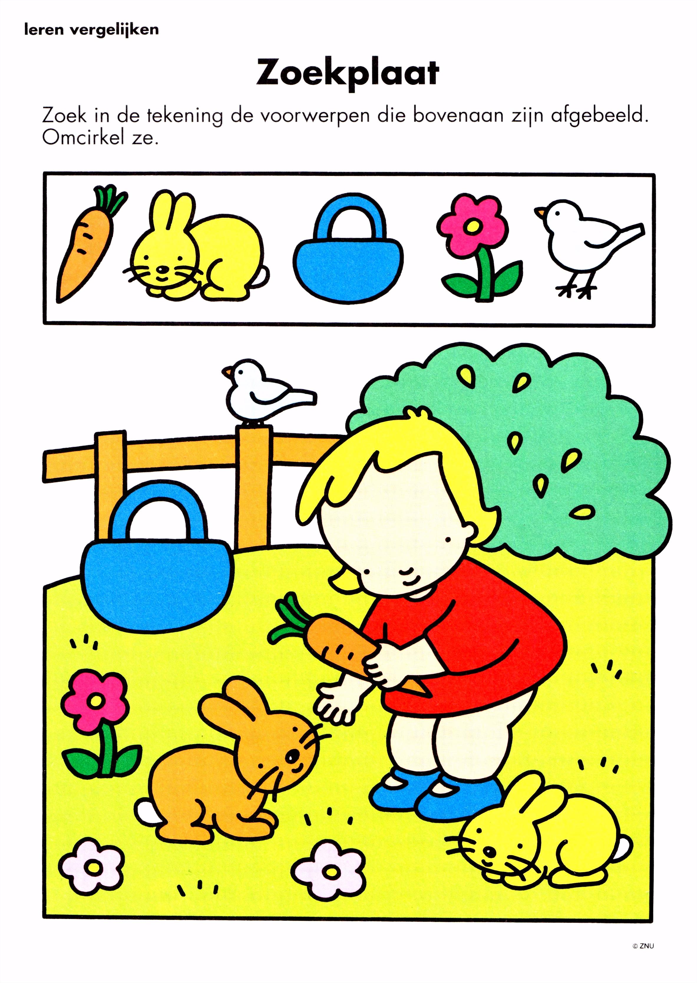 opdracht kleuterklas zoekplaat lente boerderij ren pasen