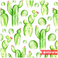 Discover cactus ideas on Pinterest