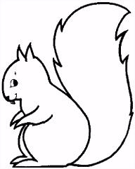 Afbeeldingsresultaat voor kleurplaat eekhoorn met pluimstaart