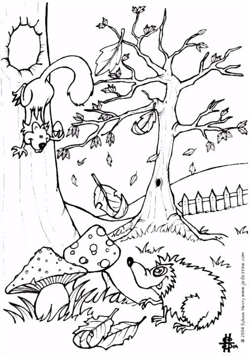 Kleurplaat herfst egel en eekhoorn Afb 6444