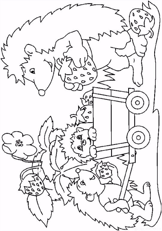 Hedgehogs Coloring Pages 20 kleurplaten