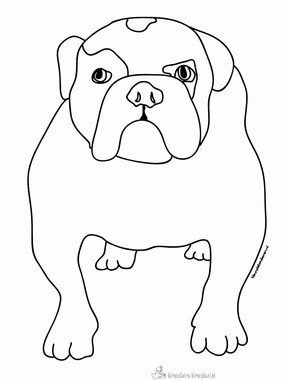 Hond Kleurplaten Eenvoudig Kleurplaat Van Een Hond Kleurplaten