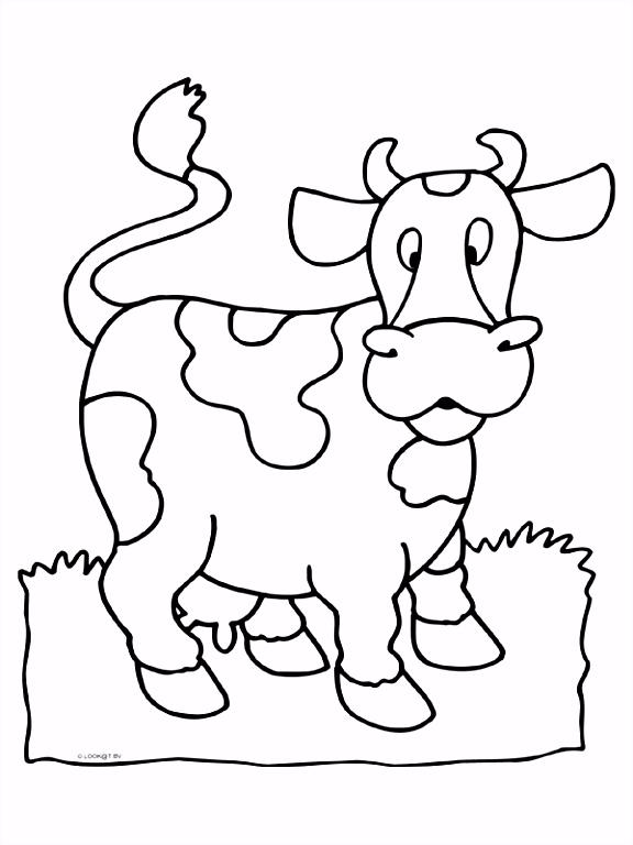 5 kleurplaat koe sletemplatex1234 sletemplatex1234