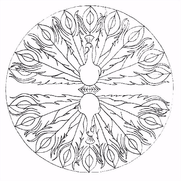 Coloring line Mandala 13 Eco Coloring Page