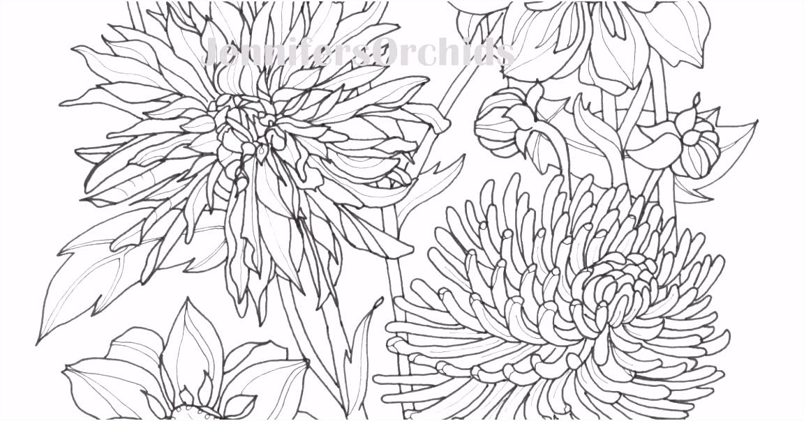 Schilderijen van Orchidee n & andere botanische werken Kleuren voor