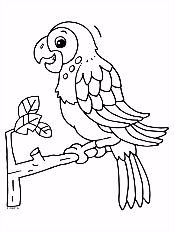 Kleurplaat Papegaai in de boom Kleurplaten