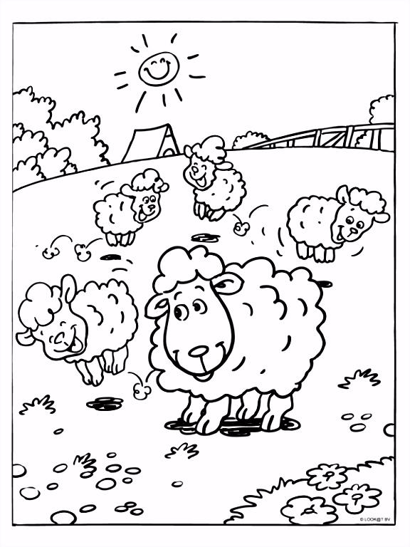 Kleurplaat Lammetjes schapen voorjaar Kleurplaten