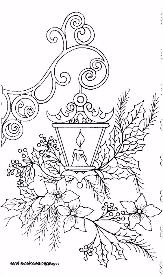 Kleurplaat Sinterklaas 4 Hummingbird Kleurplaten G5sy03gaf1 U5pvh6ihr5