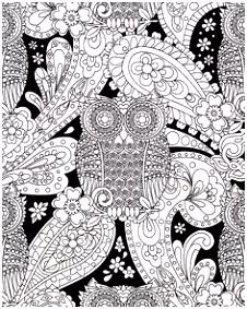 534 beste afbeeldingen van coloring owl in 2018 Abstract Adult