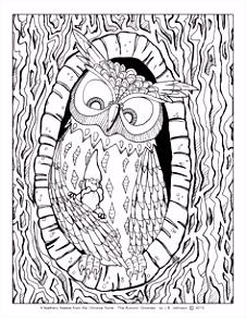 Kleurplaat Uil Mandala 344 Beste Afbeeldingen Van Vogels Uilen Enz Coloring Books B6pk94vsh5 B0ya5hshd2