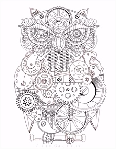 534 beste afbeeldingen van coloring owl in 2018 Abstract Adult
