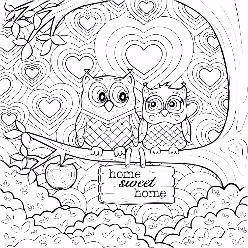 Volwassenen kunst therapie kleuren pagina van twee schattige uilen