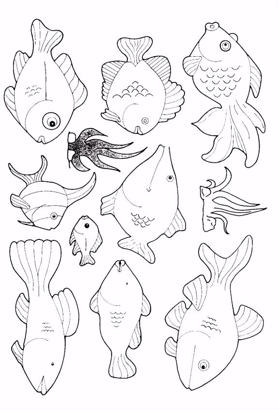 Kids n fun Kleurplaat Vissen Vissen