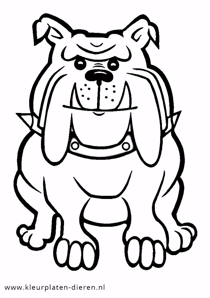 Kleurplaat bulldog Kleurplaten DierenKleurplaten Dieren