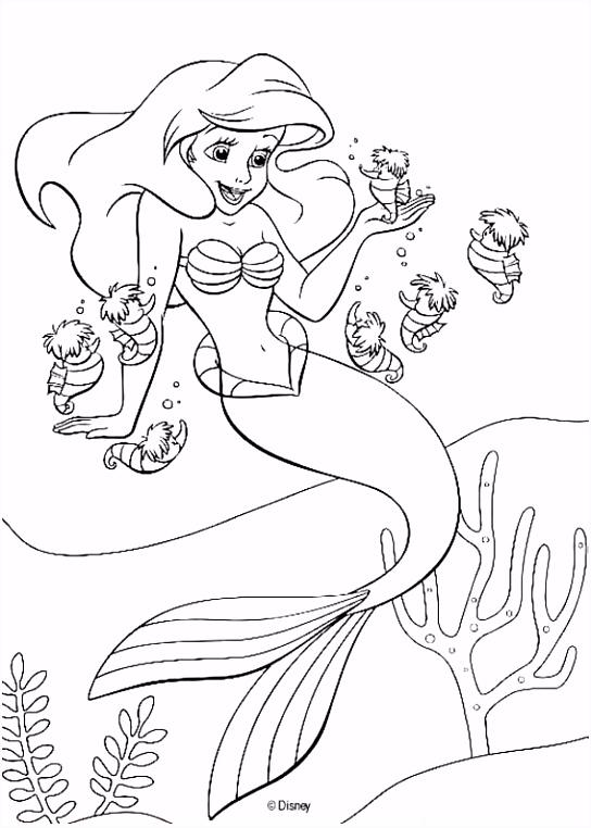 kleurplaat De kleine zeemeermin Ariel de kleine zeemeermin