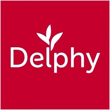 DelphyEN DelphyEN
