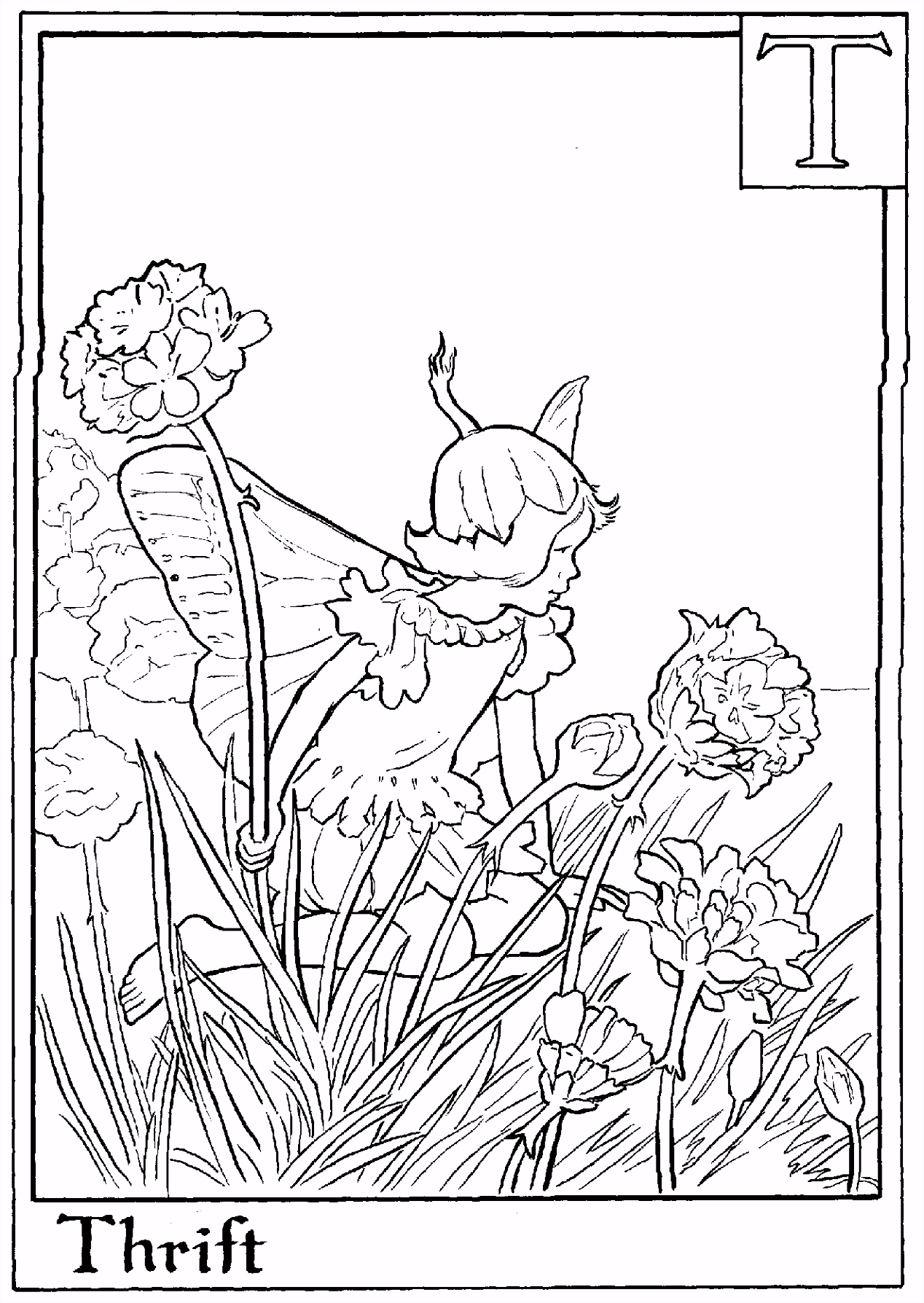flower fairies coloring pages fairies coloring page