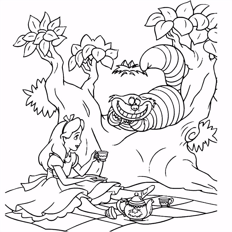 Leuk voor kids – Alice en de Kolderkat