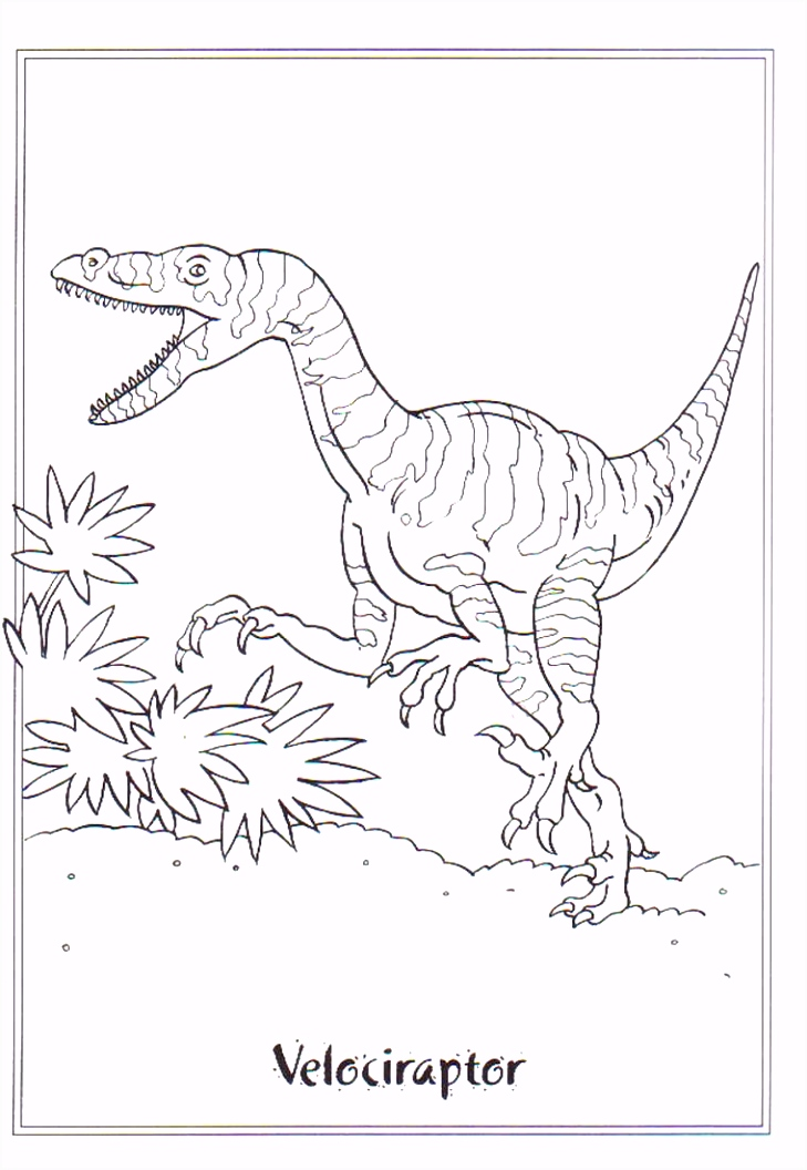 coloring page Dinosaurs 2 Velociraptor MÅ 3