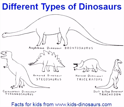 Fun Dinosaur Facts and interesting facts about dinosaurs