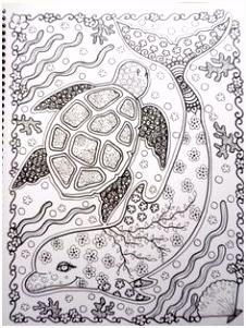 303 beste afbeeldingen van Zeeschildpadden in 2018 Marine life