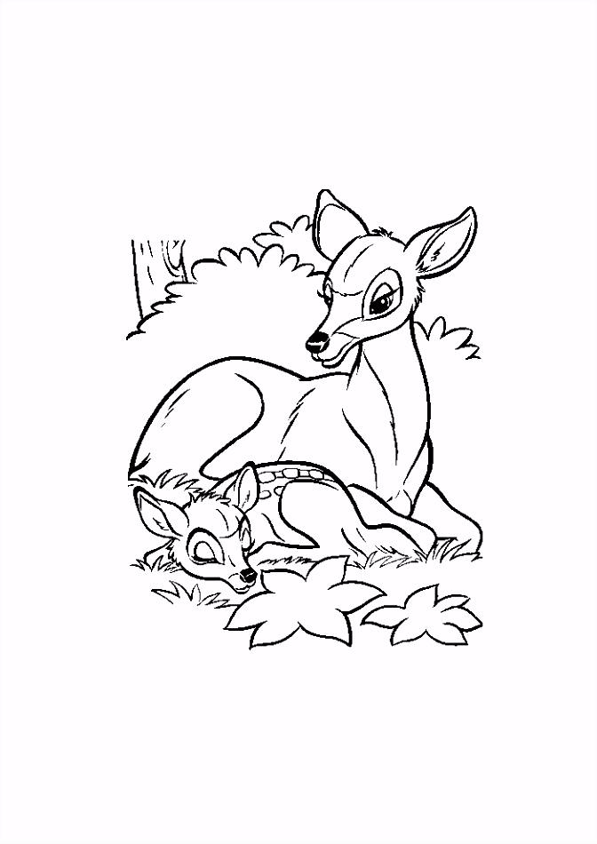 Bambi samen met mama Bambi Kleurplaten Kleurplaat