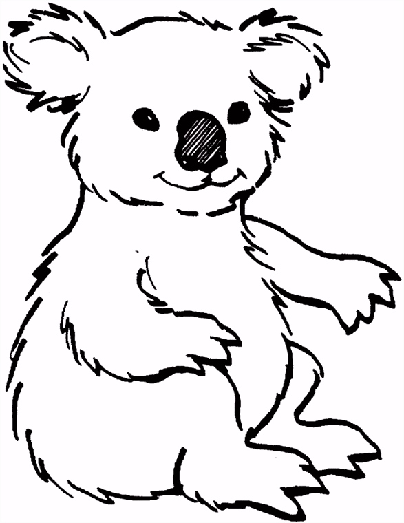 koala coloring page for kids Coloring pages Pinterest