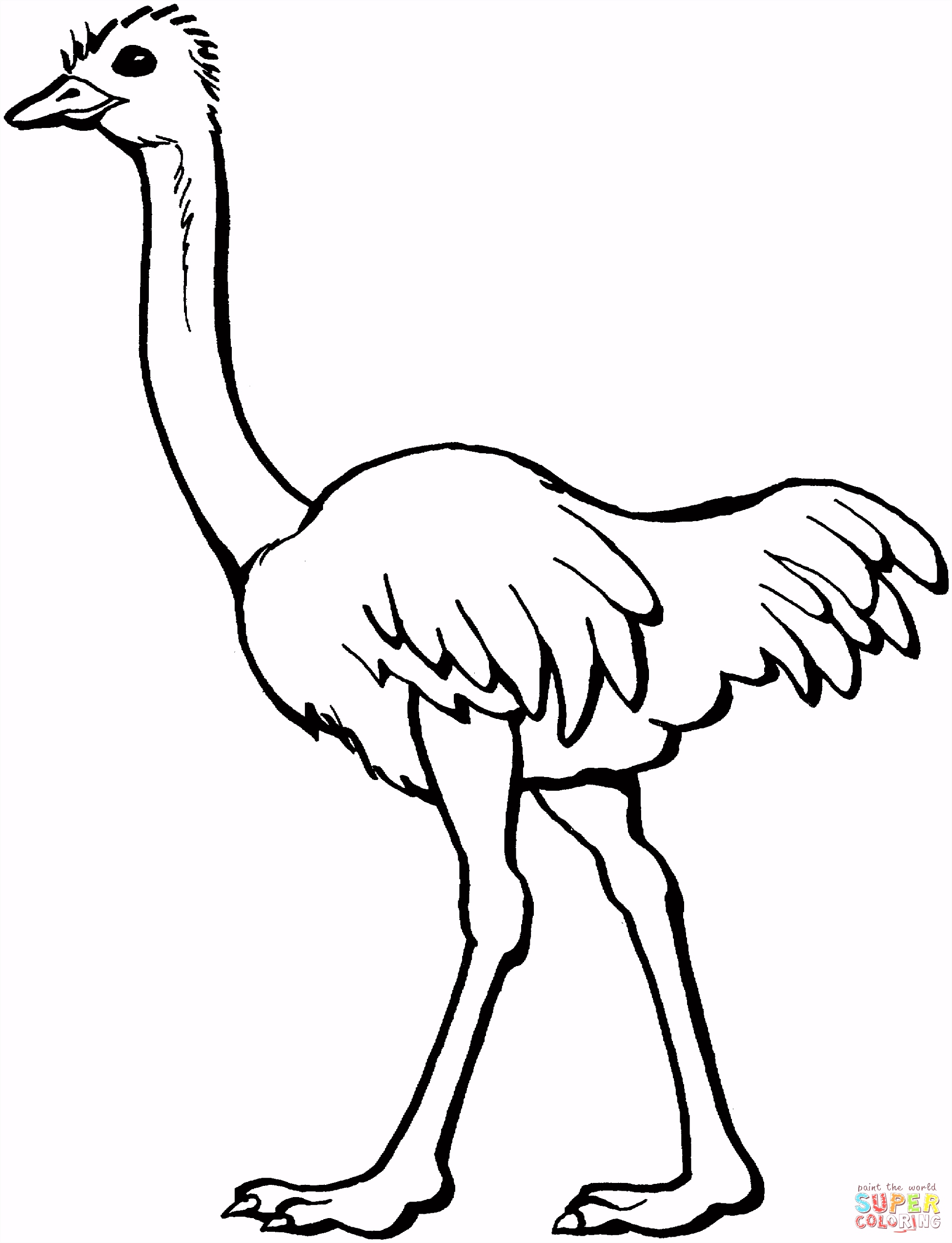 ostrich coloring page 2033—2652 illiterate