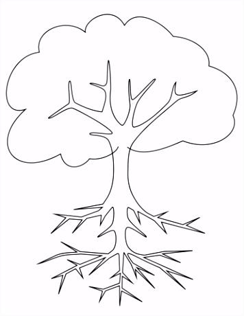 Kleurplaten Bomen En Blaadjes Boom Met Wortels Kleurplaat N1yp94bkn6 V2gkhumqt2